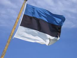 Bandera 19x35 Estonia